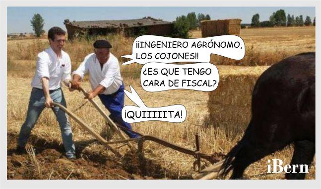 CASADO AGRÓNOMO